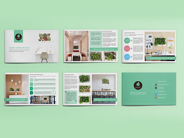 Plant shop brochure Design